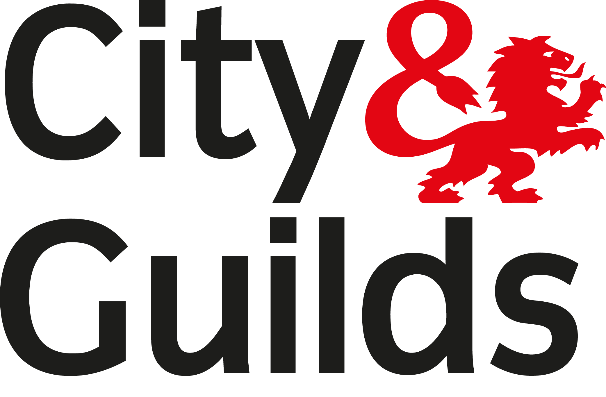city and guilds level 3